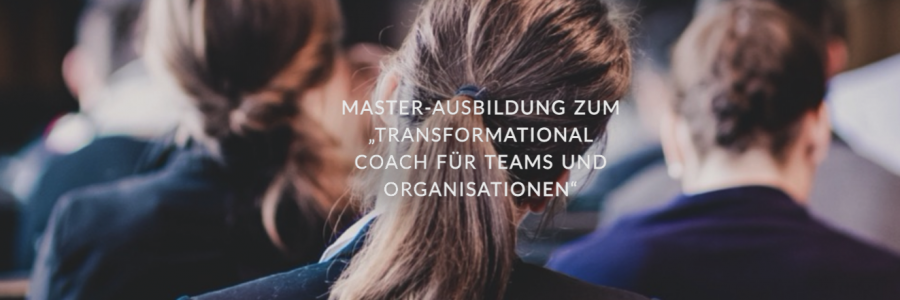 10. November: Neuer Durchgang – Transformational Coach für Teams & Organisationen